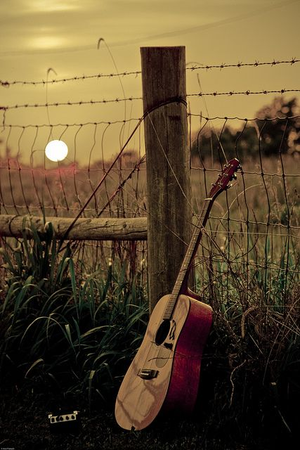 guitar and harmonica on the grass at sunset
